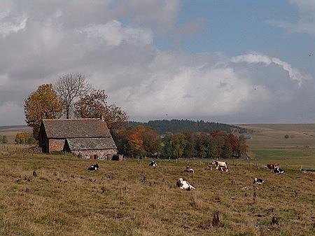 Auvergne bei Condal