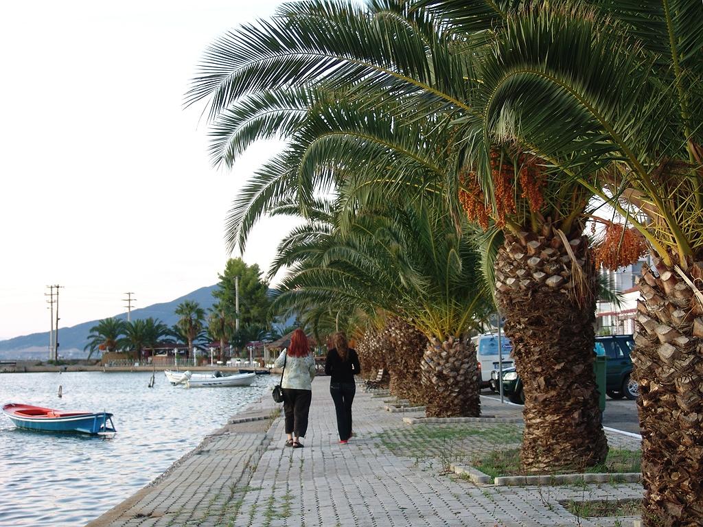 Lis und Flora unter Palmen